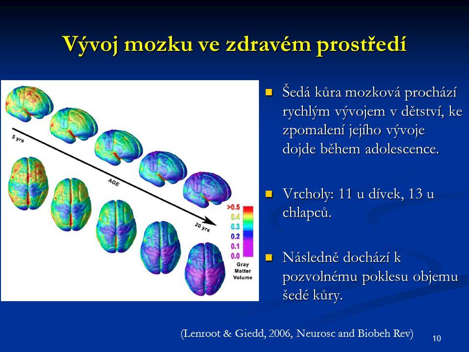 Vývoj mozku ve zdravém prostředí Šedá kůra mozková prochází rychlým vývojem v dětství, ke zpomalení jejího vývoje dojde během adolescence. Šedá kůra m