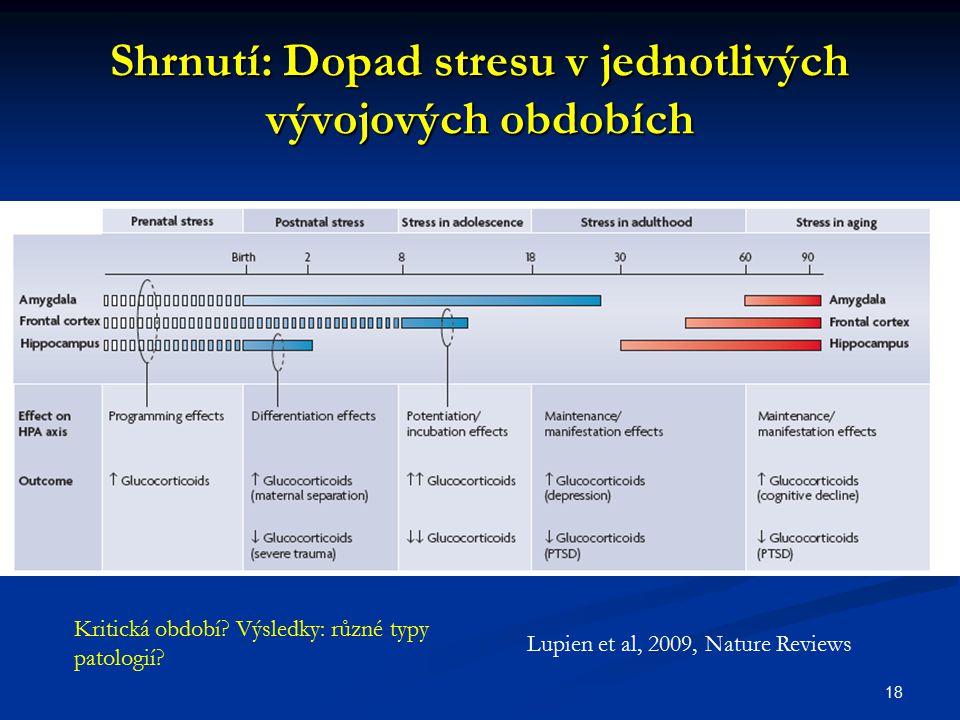 Shrnutí: Dopad stresu v jednotlivých vývojových obdobích 18 Lupien et al, 2009, Nature Reviews Kritická období? Výsledky: různé typy patologií?