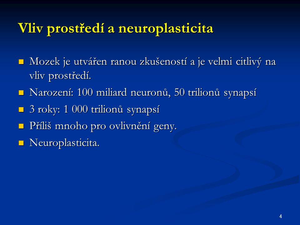 Vliv prostředí a neuroplasticita Mozek je utvářen ranou zkušeností a je velmi citlivý na vliv prostředí. Mozek je utvářen ranou zkušeností a je velmi