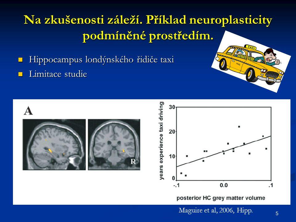 Na zkušenosti záleží. Příklad neuroplasticity podmíněné prostředím. Hippocampus londýnského řidiče taxi Hippocampus londýnského řidiče taxi Limitace s