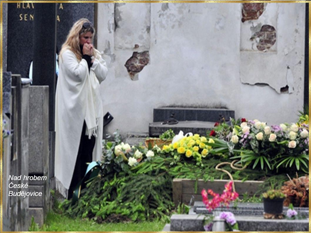 Bára Basiková Petr Kolář