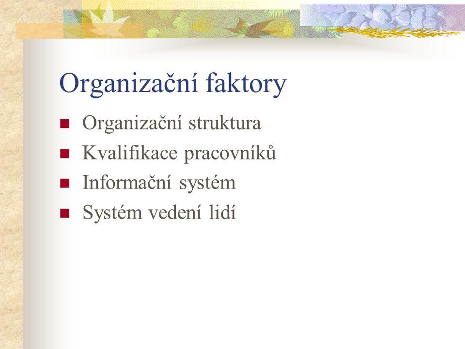 Organizační faktory Organizační struktura Kvalifikace pracovníků Informační systém Systém vedení lidí