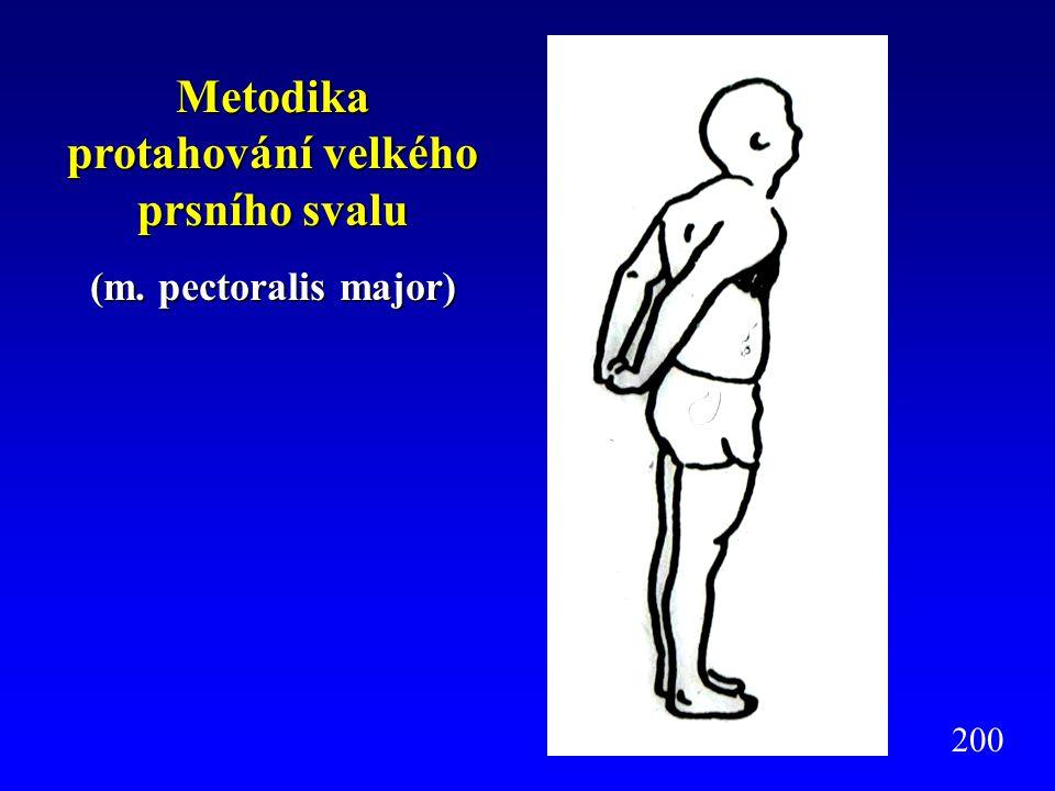 Metodika protahování zdvihače lopatek a horní část trapézového svalu (m.