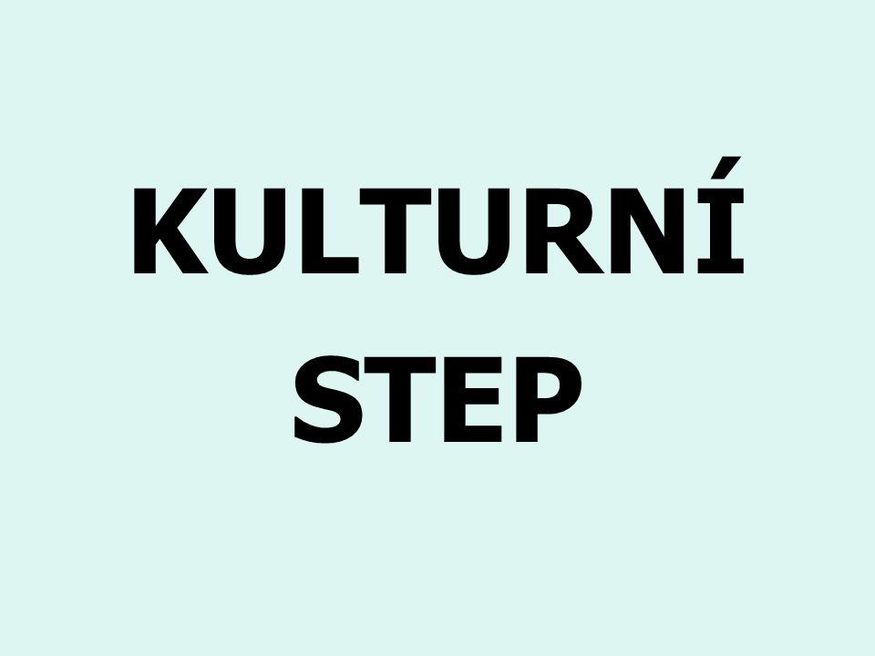 KULTURNÍ STEP