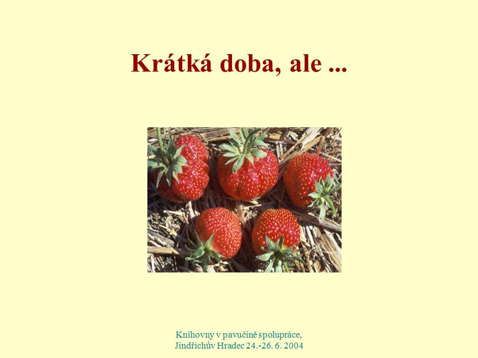 Knihovny v pavučině spolupráce, Jindřichův Hradec 24.-26. 6. 2004 Krátká doba, ale...