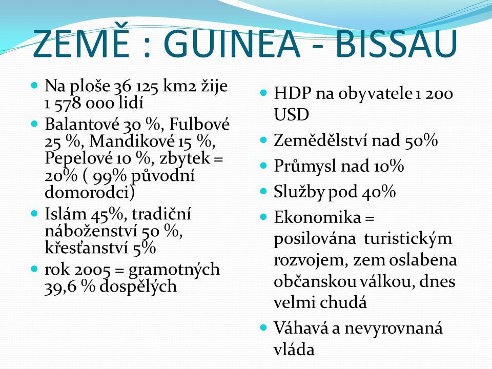 GUINEA Na ploše 245 836 km2 žije 10 683 100 lidí Několik kmenů - žádný nemá větší než 30 % Většina obyvatelstva 89 % = islám Gramotnost nad 30% HDP na obyvatele 1 100 USD Zemědělství nad 25%, chov skotu Průmysl nad 25%, těžba rudy hliníku Služby pod 40% Chudý zemědělský stát Nemá nějaké dost závažné problémy