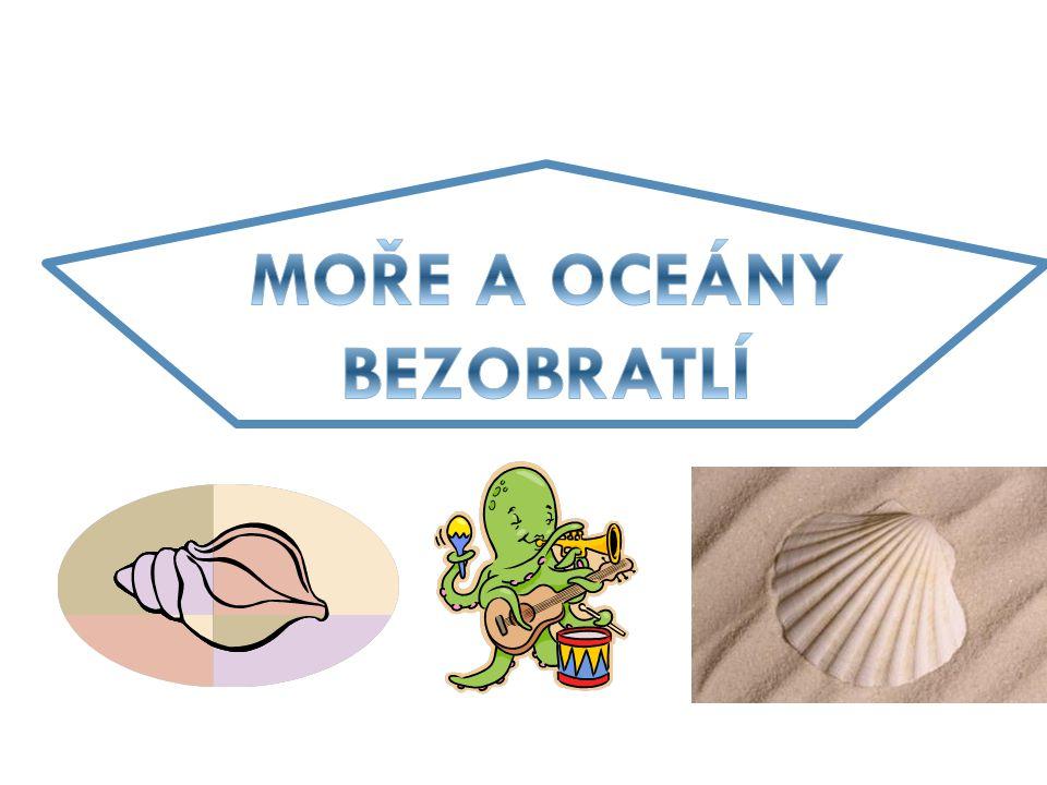 Závěr: 1)Kteří měkkýši žijí v mořích a oceánech.
