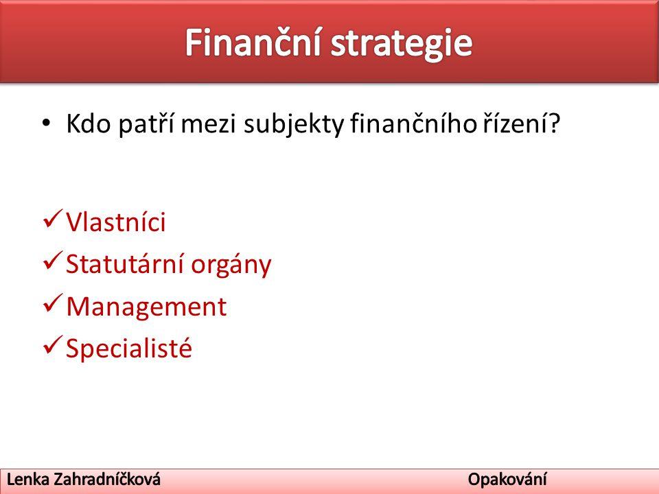 Kdo patří mezi subjekty finančního řízení Vlastníci Statutární orgány Management Specialisté