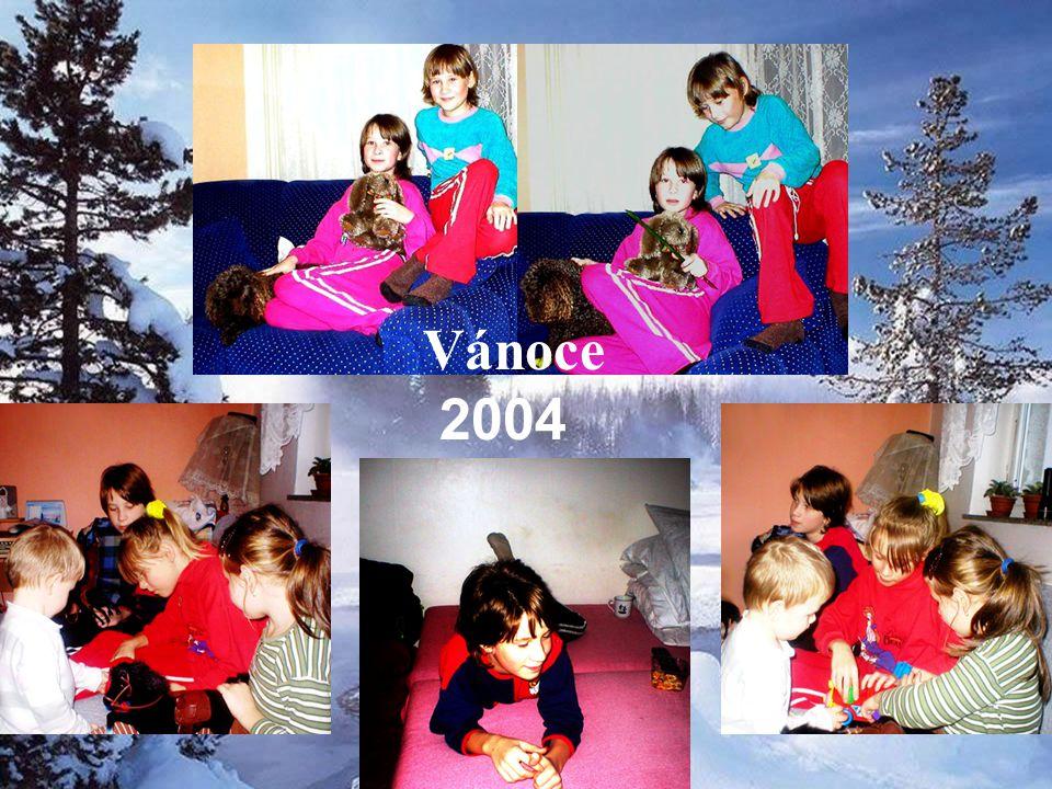Prázdninyv Pěčíně Vánocev Žamberku 2005