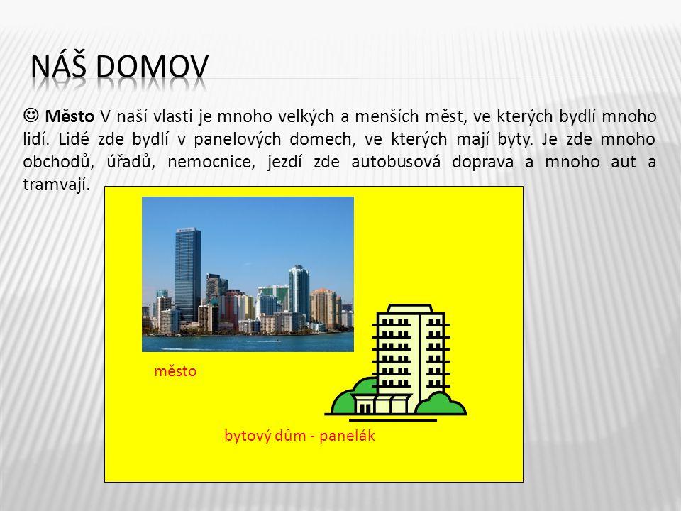 Město V naší vlasti je mnoho velkých a menších měst, ve kterých bydlí mnoho lidí. Lidé zde bydlí v panelových domech, ve kterých mají byty. Je zde mno