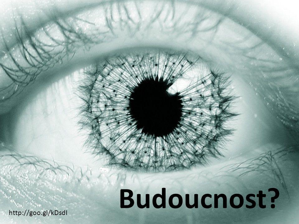 http://goo.gl/kDsdI Budoucnost?