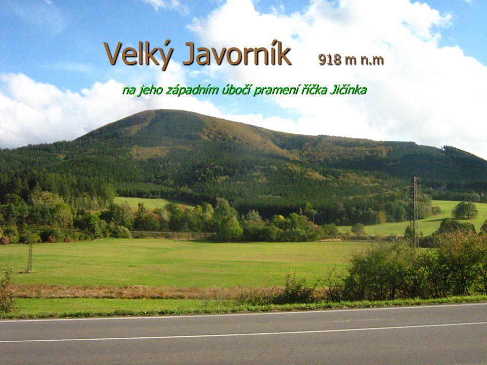 5 Velký Javorník 918 m n.m na jeho západním úbočí pramení říčka Jičínka