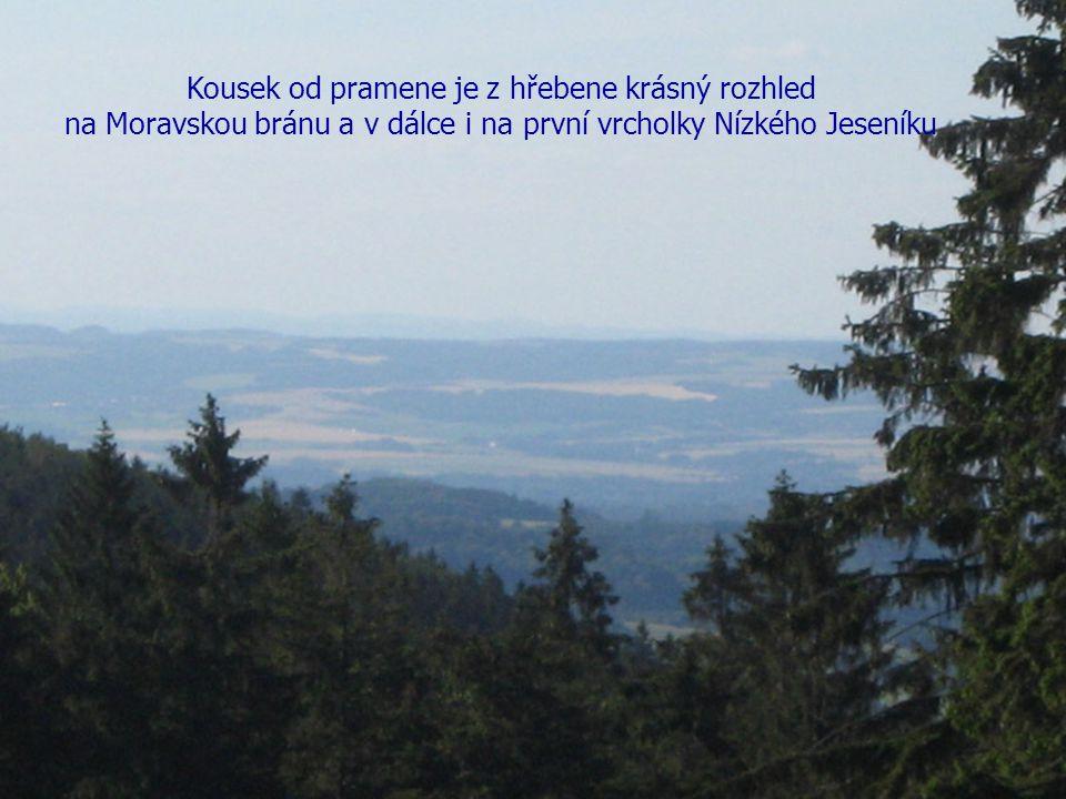 6 Kousek od pramene je z hřebene krásný rozhled na Moravskou bránu a v dálce i na první vrcholky Nízkého Jeseníku