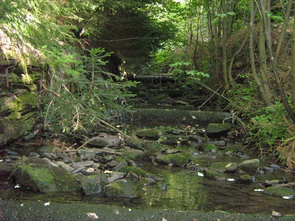 20 Jičínka protéká Novým Jičínem, který leží v podhůří Beskyd - krásné historické město - 1.písemná zpráva je z roku 1313 z roku 1313 - počet obyvatel: asi 27 000 Městská památková rezervace