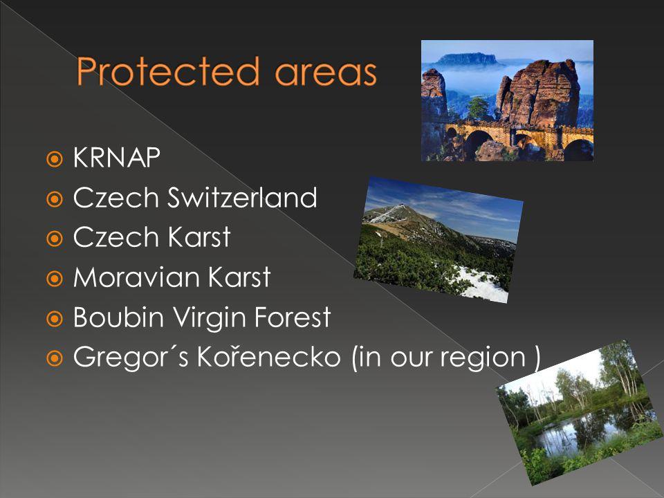  KRNAP  Czech Switzerland  Czech Karst  Moravian Karst  Boubin Virgin Forest  Gregor´s Kořenecko (in our region )