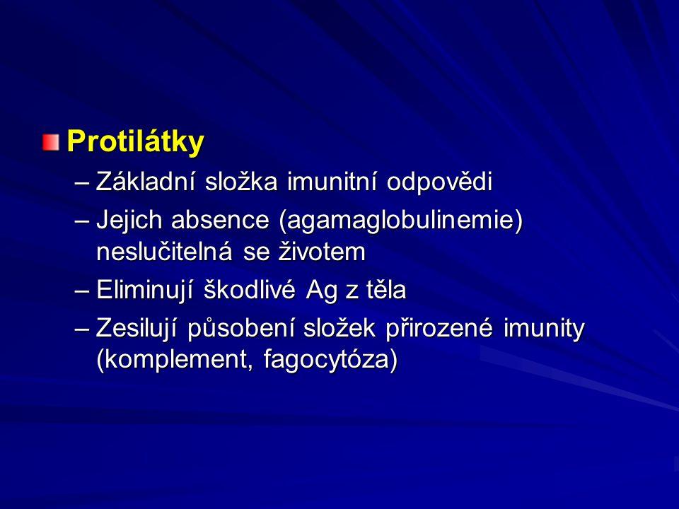 Protilátky –Základní složka imunitní odpovědi –Jejich absence (agamaglobulinemie) neslučitelná se životem –Eliminují škodlivé Ag z těla –Zesilují působení složek přirozené imunity (komplement, fagocytóza)