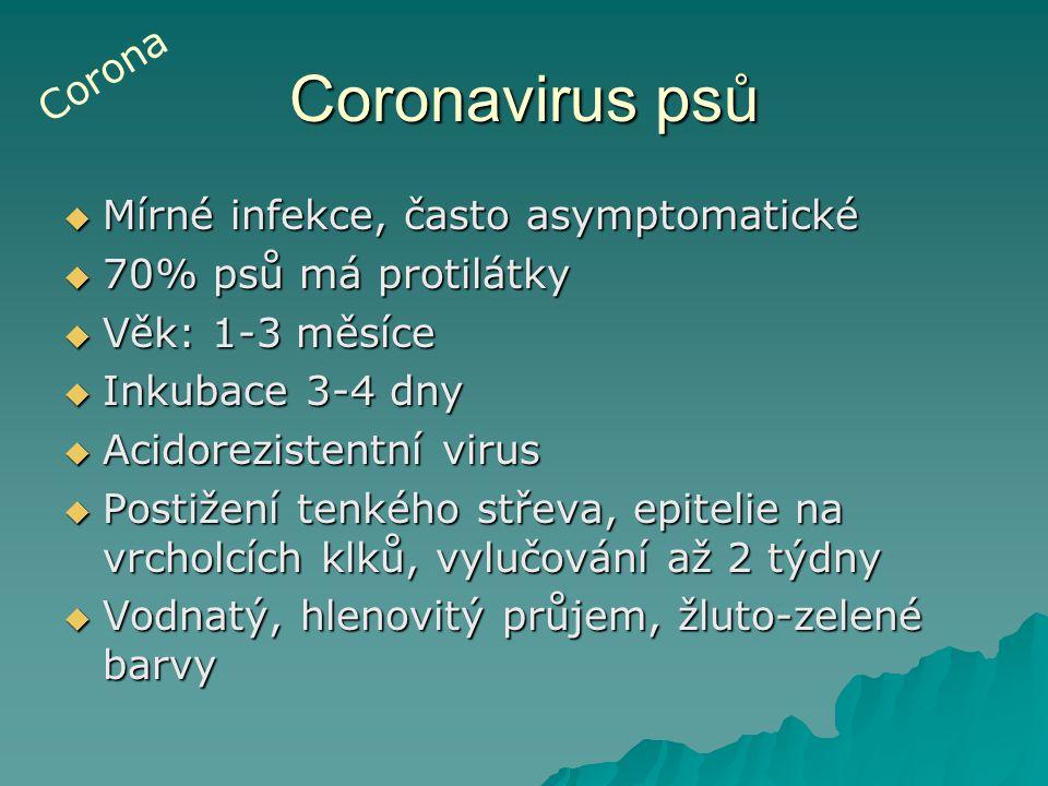 Coronavirus psů  Mírné infekce, často asymptomatické  70% psů má protilátky  Věk: 1-3 měsíce  Inkubace 3-4 dny  Acidorezistentní virus  Postižen