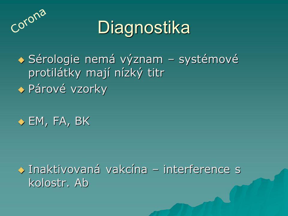 Diagnostika  Sérologie nemá význam – systémové protilátky mají nízký titr  Párové vzorky  EM, FA, BK  Inaktivovaná vakcína – interference s kolost
