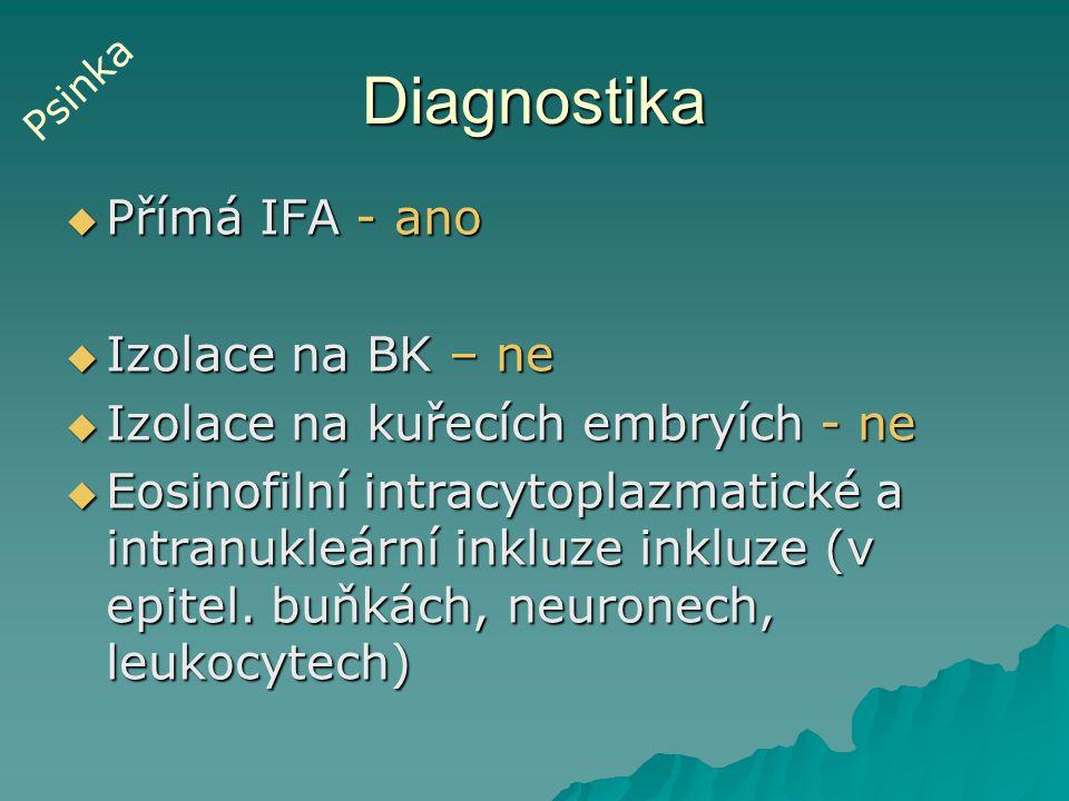Diagnostika  Přímá IFA - ano  Izolace na BK – ne  Izolace na kuřecích embryích - ne  Eosinofilní intracytoplazmatické a intranukleární inkluze ink
