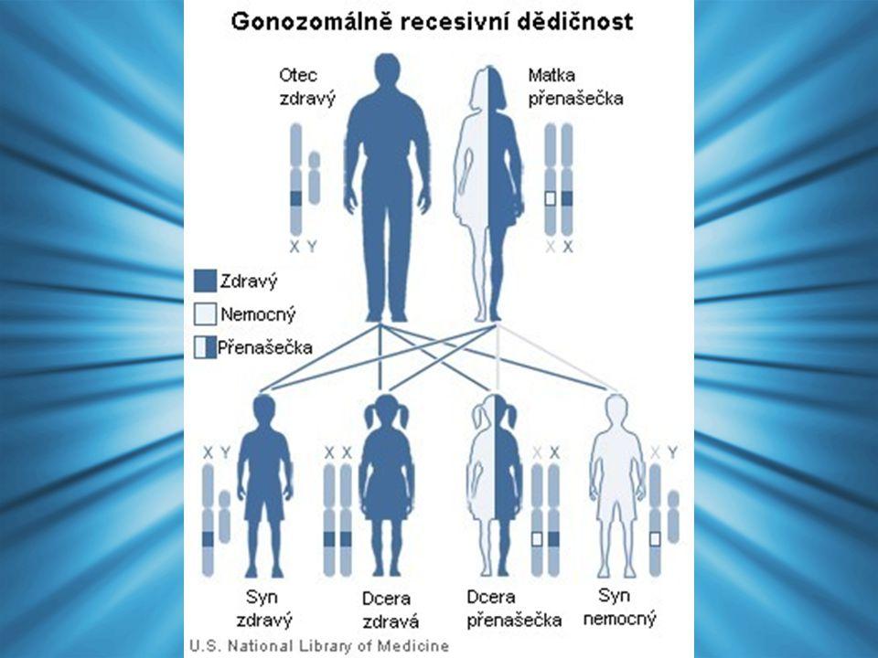 Hemofilie Porucha srážlivosti krve Projevy: –Krevní výrony svalů, kloubů –Krvácení (např.
