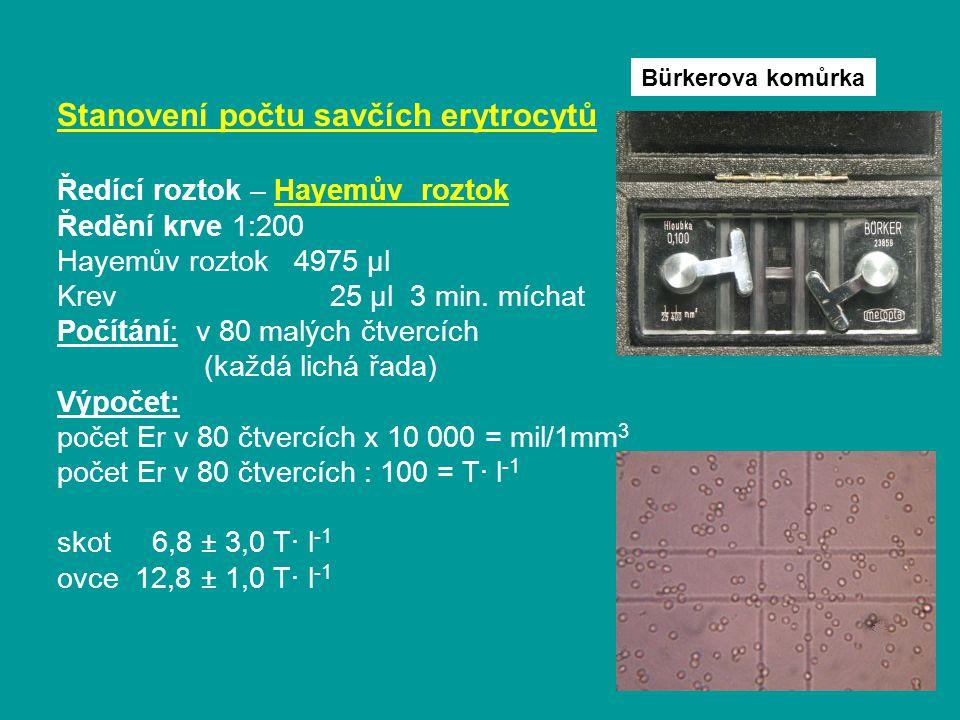 Stanovení počtu savčích erytrocytů Ředící roztok – Hayemův roztok Ředění krve 1:200 Hayemův roztok 4975 μl Krev 25 μl 3 min.