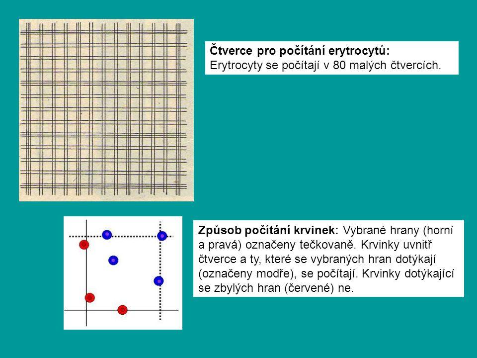 Způsob počítání krvinek: Vybrané hrany (horní a pravá) označeny tečkovaně.