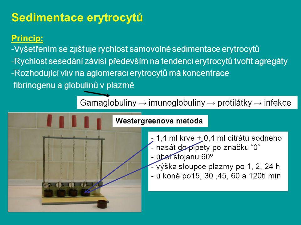 Sedimentace erytrocytů Princip: -Vyšetřením se zjišťuje rychlost samovolné sedimentace erytrocytů -Rychlost sesedání závisí především na tendenci erytrocytů tvořit agregáty -Rozhodující vliv na aglomeraci erytrocytů má koncentrace fibrinogenu a globulinů v plazmě Westergreenova metoda Gamaglobuliny → imunoglobuliny → protilátky → infekce - 1,4 ml krve + 0,4 ml citrátu sodného - nasát do pipety po značku 0 - úhel stojanu 60º - výška sloupce plazmy po 1, 2, 24 h - u koně po15, 30,45, 60 a 120ti min