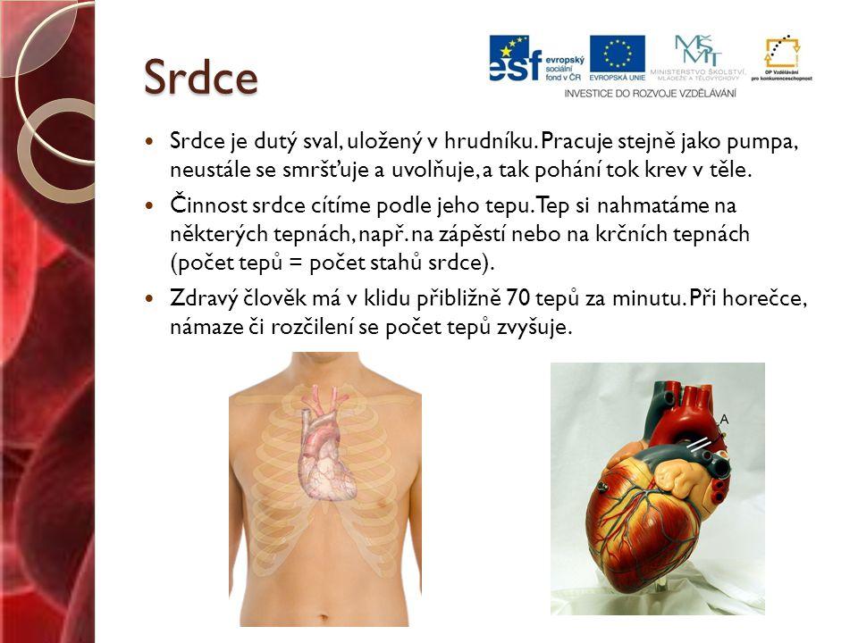 Spoj, co k sobě patří: SRDCE TEPNY ČERVENÉ KRVINKY VLÁSEČNICE BÍLÉ KRVINKY cévy, které rozvádějí okysličenou krev ze srdce po těle dutý sval uložený v hrudníku, pracuje stejně jako pumpa pohlcují a zneškodňují bakterie a jiné cizorodé látky obsahují červené krevní barvivo, rozvádí po těle kyslík získaný v plicích nejmenší a nejjemnější cévy
