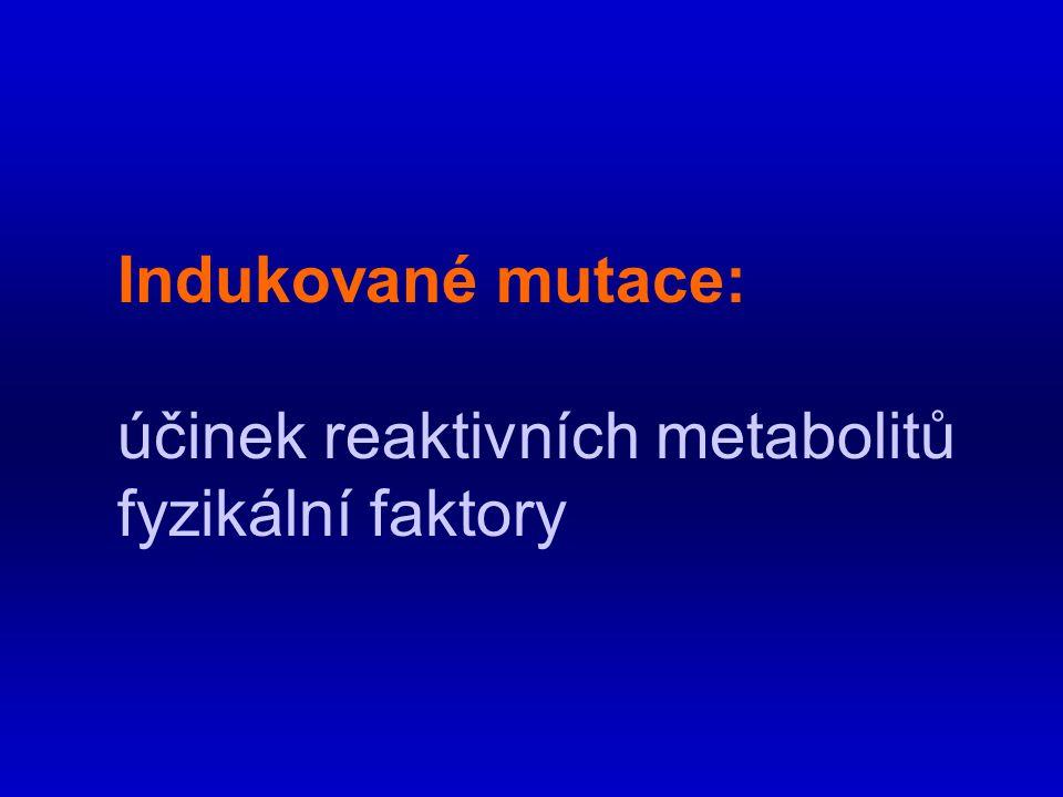 Indukované mutace: účinek reaktivních metabolitů fyzikální faktory