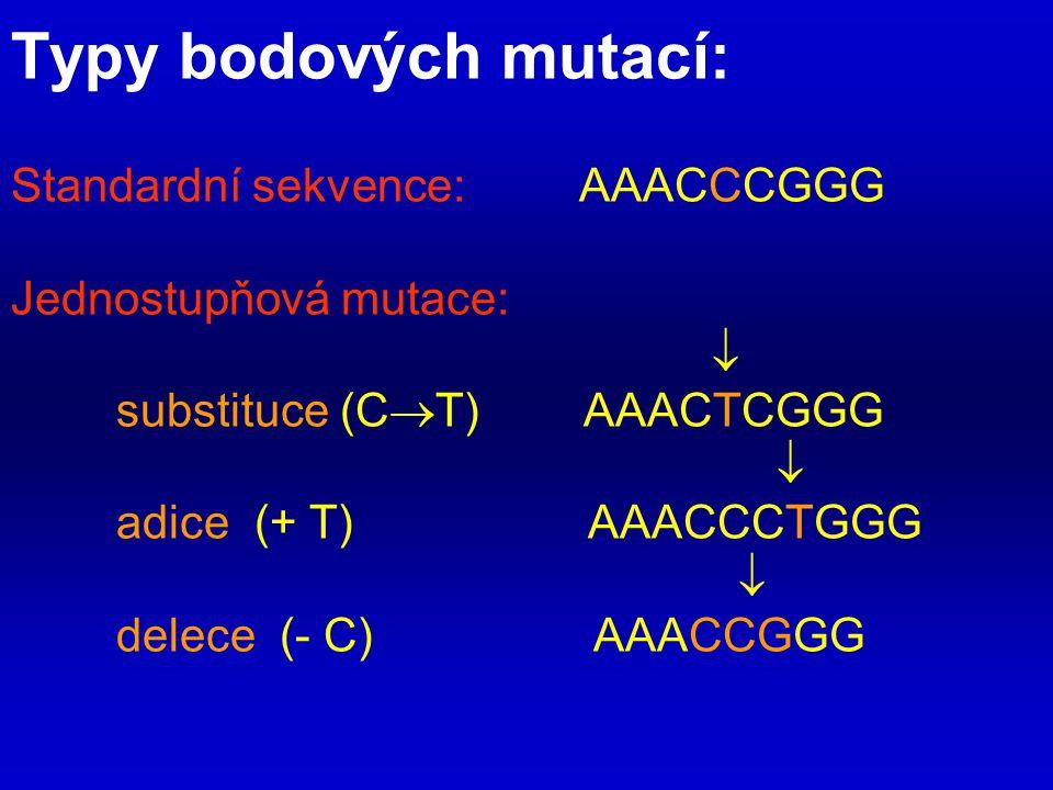 Typy bodových mutací: Standardní sekvence: AAACCCGGG Jednostupňová mutace:  substituce (C  T) AAACTCGGG  adice (+ T) AAACCCTGGG  delece (- C) AAAC
