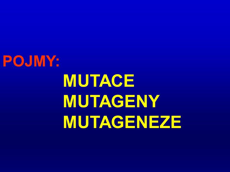 POJMY: MUTACE MUTAGENY MUTAGENEZE