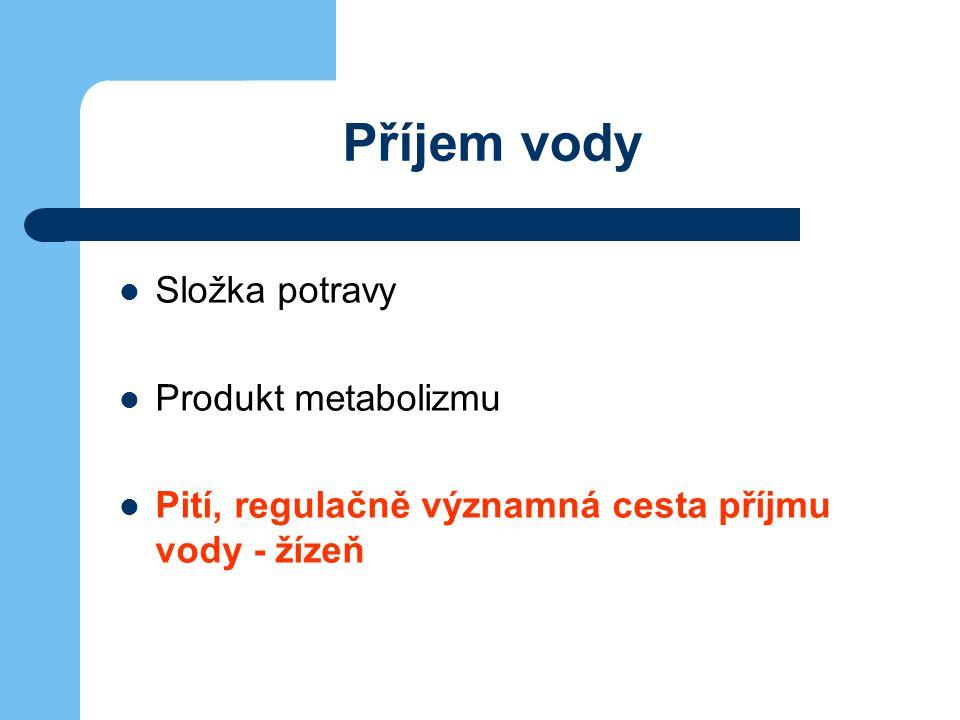 Výdej vody Kůží (perspiratio insensibilis, pot) Dýchací systém (perspiratio insensibilis) Stolice Moč, regulačně významná cesta výdeje vody - ADH