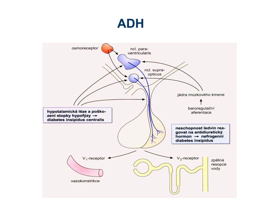 Vliv renálních patofyziologických stavů na volum a osmolalitu StavNaH2OH2O Akutní selhání ledvin, inic.