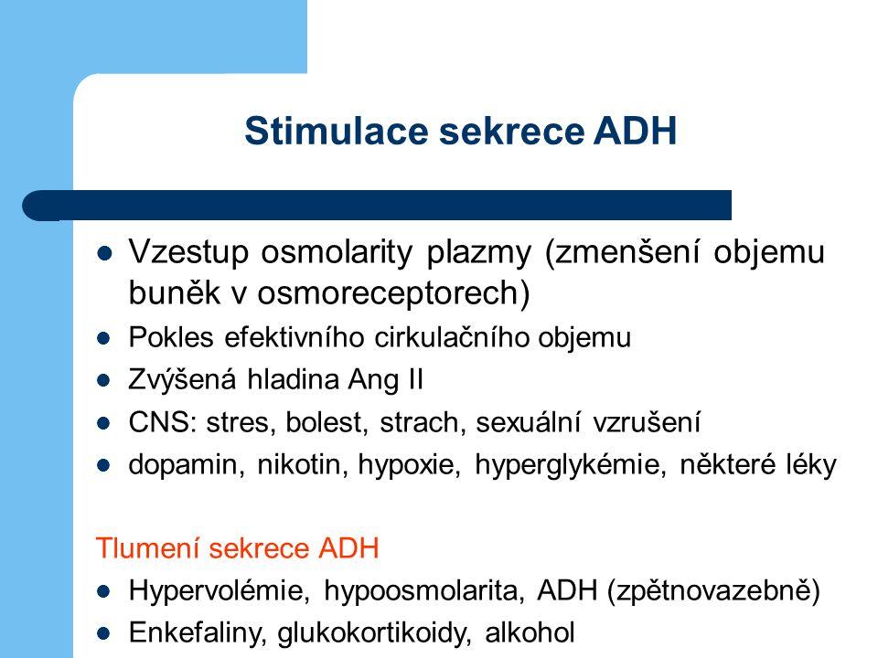 Stimulace sekrece ADH Vzestup osmolarity plazmy (zmenšení objemu buněk v osmoreceptorech) Pokles efektivního cirkulačního objemu Zvýšená hladina Ang I