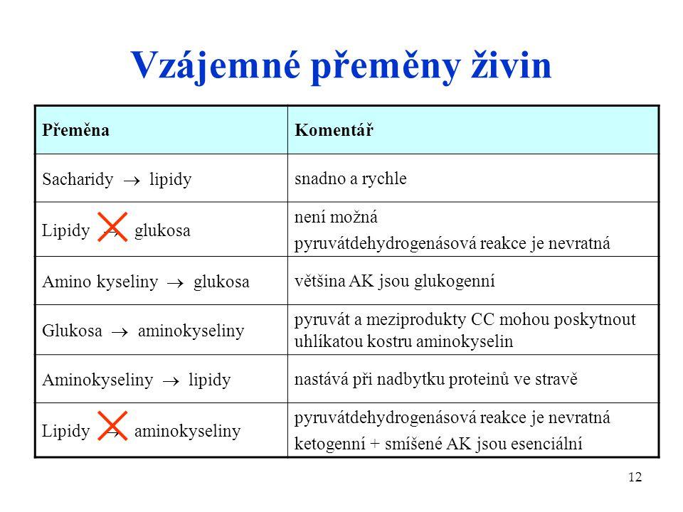 12 Vzájemné přeměny živin PřeměnaKomentář Sacharidy  lipidy snadno a rychle Lipidy  glukosa není možná pyruvátdehydrogenásová reakce je nevratná Ami