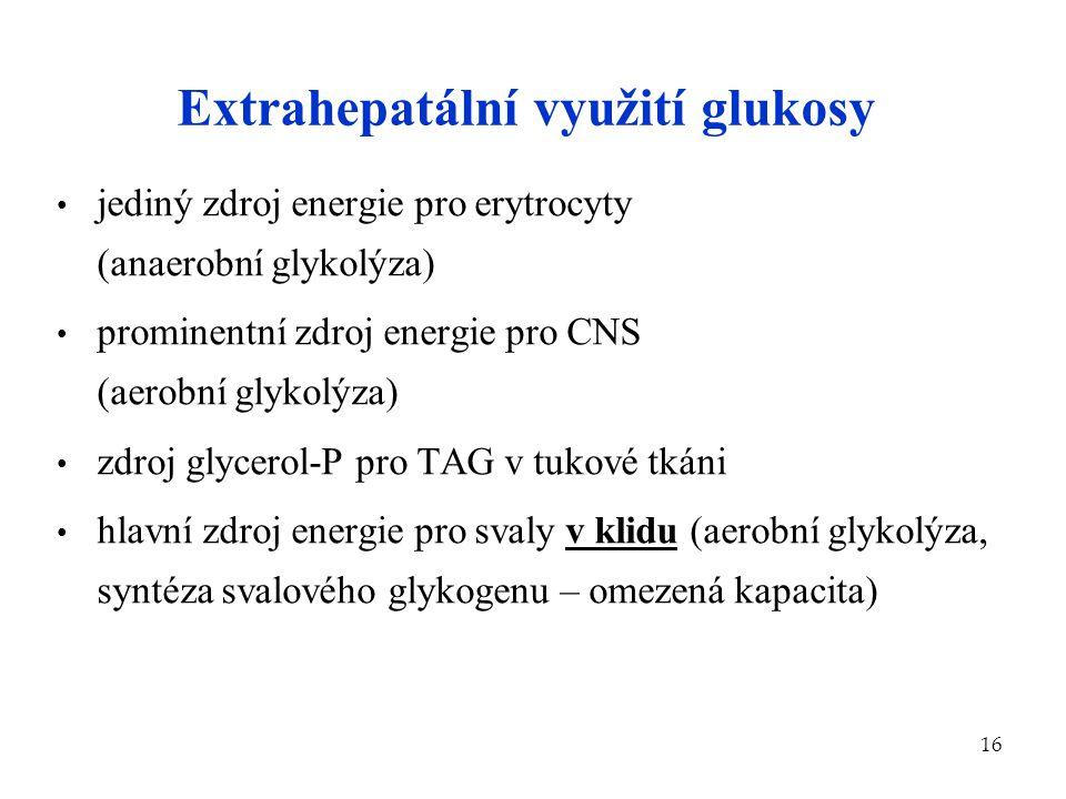 16 Extrahepatální využití glukosy jediný zdroj energie pro erytrocyty (anaerobní glykolýza) prominentní zdroj energie pro CNS (aerobní glykolýza) zdro