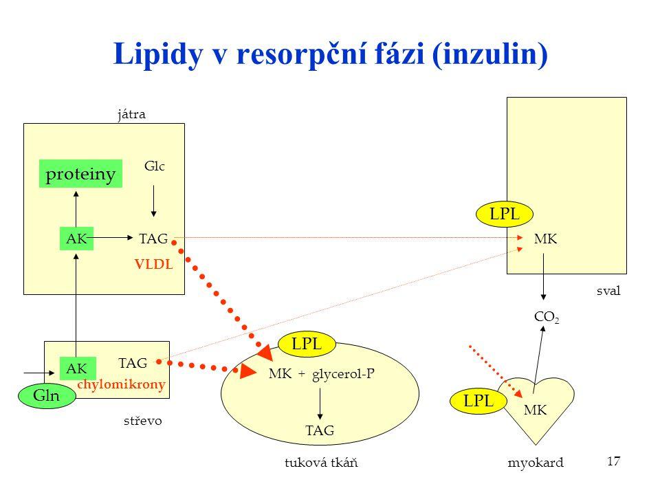 17 Lipidy v resorpční fázi (inzulin) AK střevo játra Glc TAG tuková tkáň MK + glycerol-P TAG sval CO 2 AK TAG VLDL MK myokard MK chylomikrony LPL prot