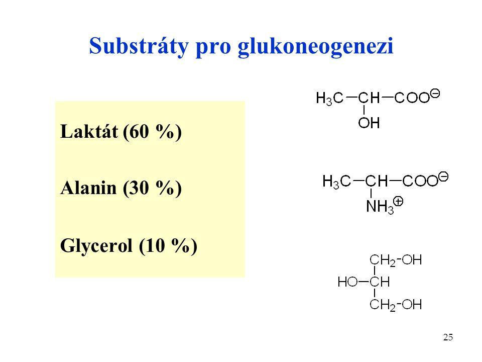 25 Substráty pro glukoneogenezi Laktát (60 %) Alanin (30 %) Glycerol (10 %)