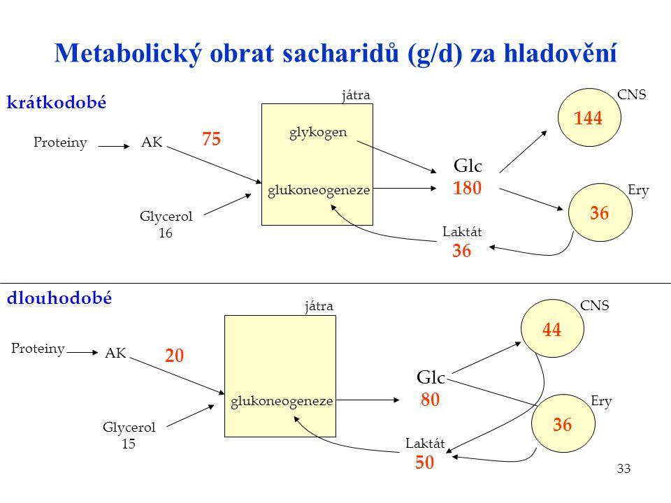 33 Metabolický obrat sacharidů (g/d) za hladovění glykogen glukoneogeneze játra AK Glycerol 16 144 CNS 36 Ery Laktát 36 Glc 180 glukoneogeneze játra A