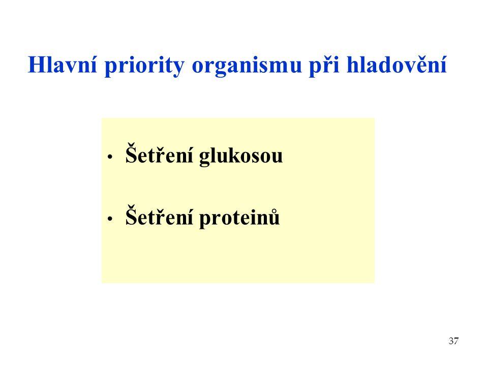 37 Hlavní priority organismu při hladovění Šetření glukosou Šetření proteinů