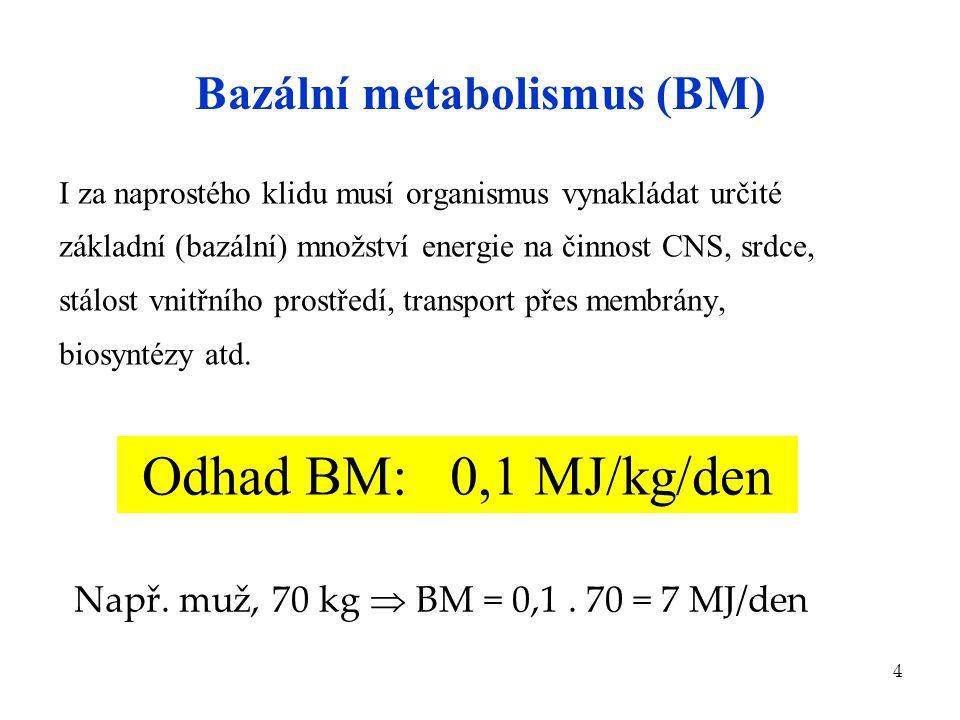 4 Bazální metabolismus (BM) I za naprostého klidu musí organismus vynakládat určité základní (bazální) množství energie na činnost CNS, srdce, stálost