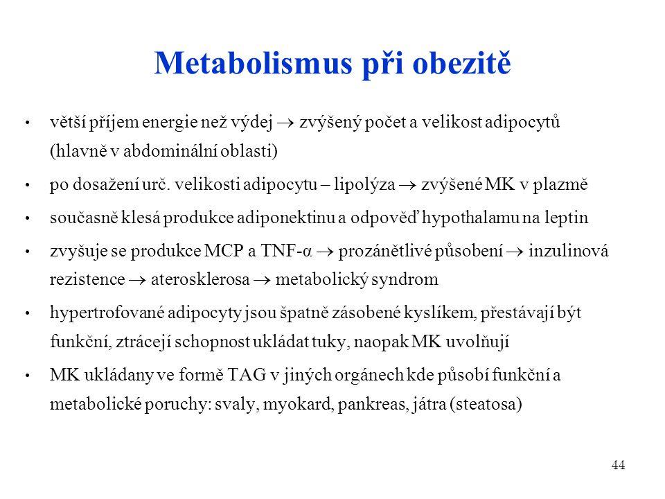 44 Metabolismus při obezitě větší příjem energie než výdej  zvýšený počet a velikost adipocytů (hlavně v abdominální oblasti) po dosažení urč. veliko