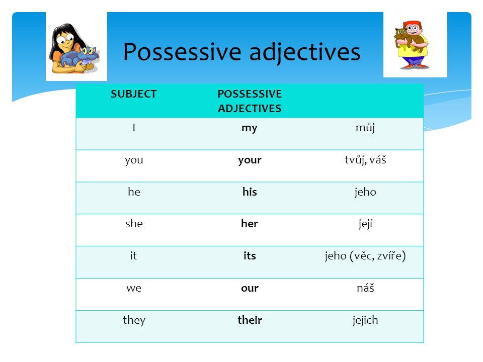Possessive adjectives SUBJECTPOSSESSIVE ADJECTIVES Imymůj youyourtvůj, váš hehisjeho sheherjejí ititsjeho (věc, zvíře) weournáš theytheirjejich