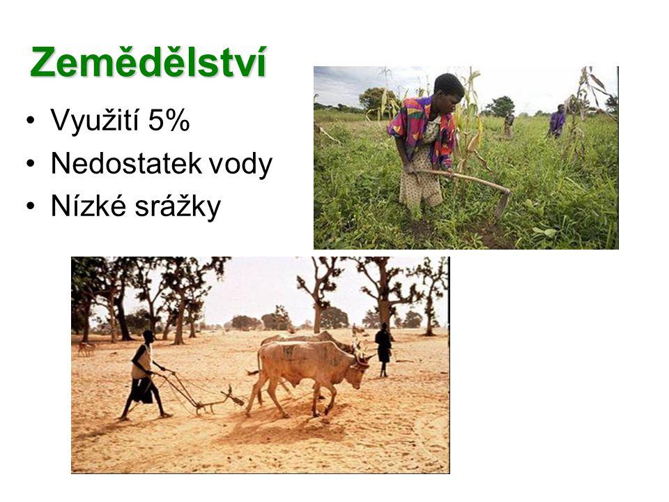 Zemědělství Využití 5% Nedostatek vody Nízké srážky