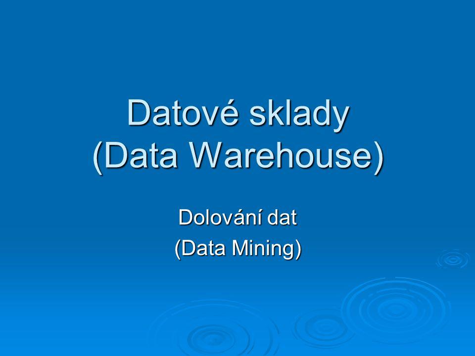 Datové sklady (Data Warehouse) Dolování dat (Data Mining)