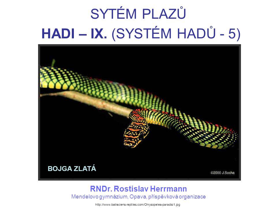 SYTÉM PLAZŮ HADI – IX. (SYSTÉM HADŮ - 5) RNDr.