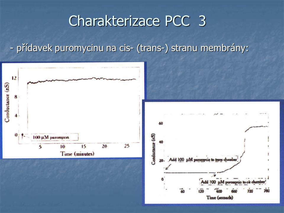 Charakterizace PCC 3 - přídavek puromycinu na cis- (trans-) stranu membrány: