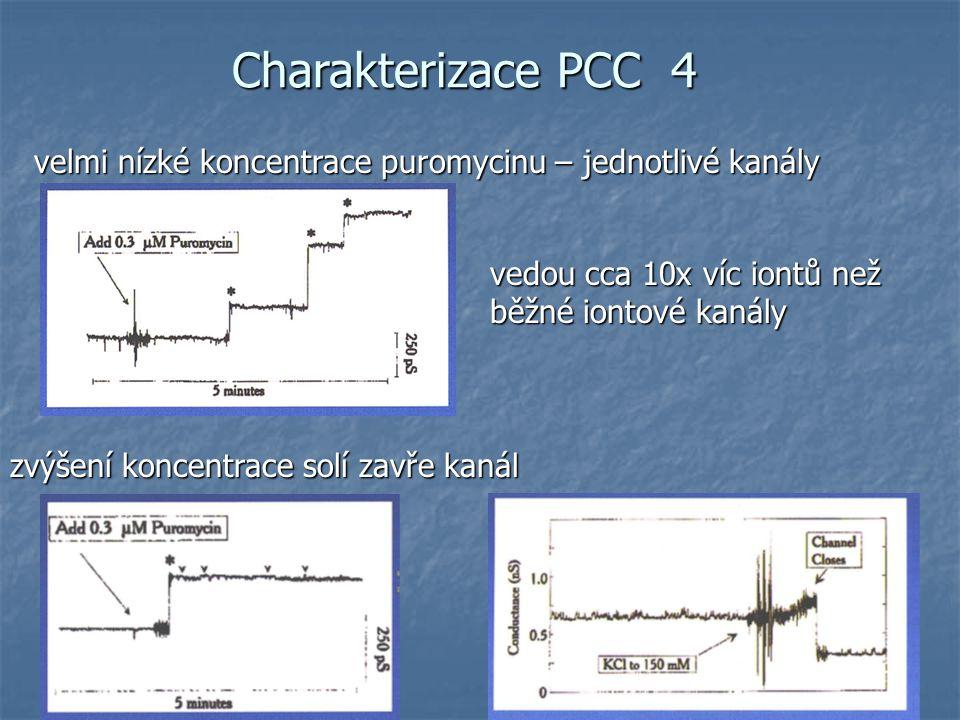 Charakterizace PCC 4 velmi nízké koncentrace puromycinu – jednotlivé kanály zvýšení koncentrace solí zavře kanál vedou cca 10x víc iontů než běžné iontové kanály