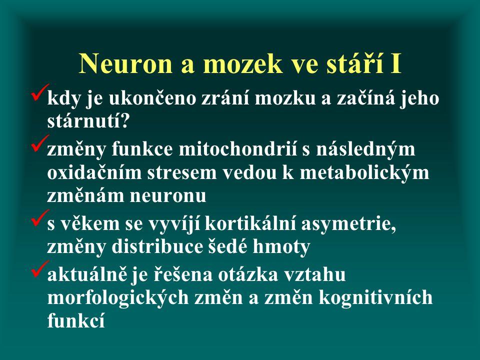 Neuron a mozek ve stáří I kdy je ukončeno zrání mozku a začíná jeho stárnutí.