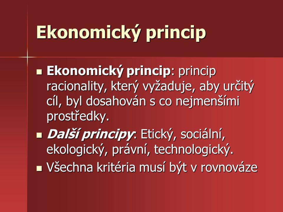 Ekonomický princip Ekonomický princip: princip racionality, který vyžaduje, aby určitý cíl, byl dosahován s co nejmenšími prostředky. Ekonomický princ